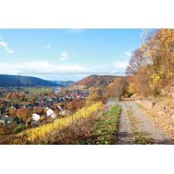 Rotweinwanderweg -...